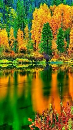 Beautiful Pictures Amazing World is Earth laughs in flowers. Nature does not hurry, yet everything is accomplished Beautiful World, Beautiful Places, Beautiful Wife, Beautiful Scenery, Absolutely Gorgeous, Autumn Scenery, Amazing Nature, Belle Photo, Pretty Pictures