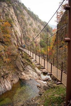 Hängebrücke – Seoraksan National Park, Korea – Veronica Zarrazola – Join the world of pin Parque Nacional Seoraksan, Places To Travel, Places To See, Seoraksan National Park, South Korea Travel, Asia Travel, Suspension Bridge, Parcs, The Great Outdoors
