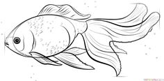 How to draw a Goldfish step by step. Drawing tutorials for kids and beginners.