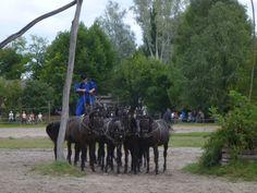 Puszta Horse Show