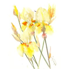 Yellow Irises, 15 x 12 in, mothers for her yellow wall art, yellow... ($43) ❤ liked on Polyvore featuring home, home decor, wall art, photo wall art, yellow wall art, photo painting, yellow home decor and floral home decor