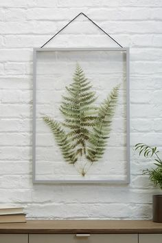 Buy Large Botanical Floating Frame from the Next UK online shop Botanical Bathroom, Statement Wall, Paint Effects, Green Marble, Kitchen Wall Art, Practical Gifts, Floating Frame, Grey Paint, Living Furniture