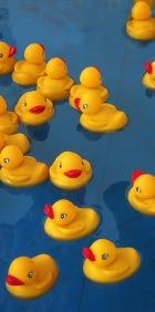 Lucky duck game - baby shower game! Variations:  Write an action word (jump, sing, breastfeed) on the bottom of each duck and have guests pantomime their action in front of other guests. Write lucky duck on bottom of one