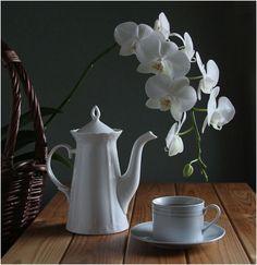 photo: Evening tea party | photographer: Valentina | WWW.PHOTODOM.COM