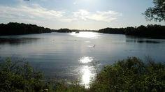 Unterbacher See. Mehr auf: http://www.coolibri.de/staedte/duesseldorf/freizeit/parks-in-duesseldorf/unterbacher-see.html