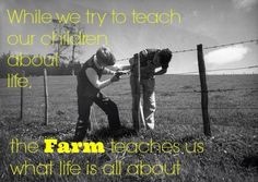 Farming Quotes Inspiration Agriculturalinvestments  Agriculture Quotes  Pinterest . Decorating Inspiration