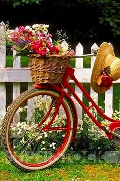 Red bicycle with a basket of flowers