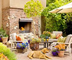 Design your perfect Backyard Deck