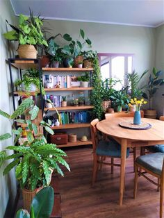 A community focused on the discussion, care, and well-being of houseplants! Room With Plants, House Plants Decor, Plant Decor, Green Rooms, Diy Décoration, Aesthetic Room Decor, Plant Shelves, Cozy House, Houseplants