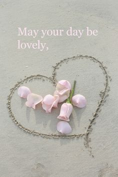Have a lovely day my sweet pin-pals