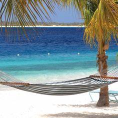 15 Reasons to Visit Bonaire #travel #bonaire