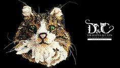 Norwegian forest cat Gatto norvegese delle foreste | Dragons & Cats
