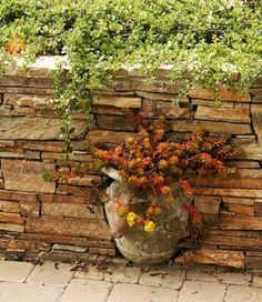 93 best Fences and walls images on Pinterest   Garden walls ... Dry Garden Design With Pot Html on box gardens designs, pinch pot designs, flower garden designs, garden gate designs, garden trellis designs, garden planters designs, rock gardens designs, diy garden designs, water garden designs, flower pot designs, potted plant designs, dish gardens designs, container gardens designs, stone gardens designs, patio pot designs, herb gardens designs, potted vegetable garden designs, pot people designs, indoor garden designs, mosaic pots designs,