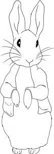 how to draw peter rabbit step by step