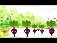 Muzyka  Świetna partytura dla dzieci - YouTube Fruit, Instrumental, Zumba, Youtube, Education, Onderwijs, Instrumental Music, Learning, Youtubers