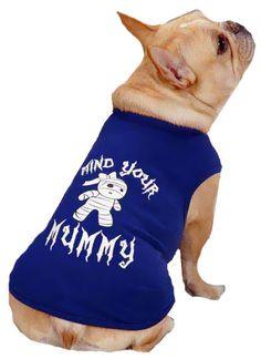 Casual Canine Mind Your Mummy Tee Blue - Dog Halloween Costume