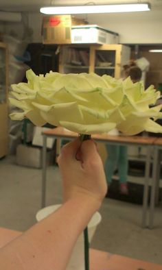 Her er rosen vi lærte å sy, fra siden. Synes den ble sopp-formette,så oppdrag utført.