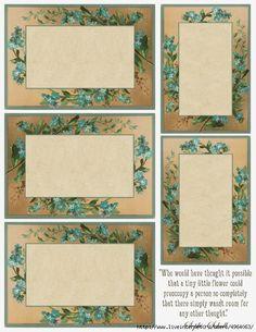 Forget-me-not imprimible ~ lila-n-lavanda (541x700, 326Kb)