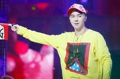 Mino Winner