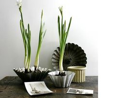 Old baking pan planters. Idea and instructions on http://urbancomfort.typepad.com/urban_nest/page/4/