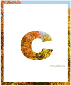 Lowercase letter c | autumn leaves | fall leaves #fall #autumn #alphabet #typography #initial #monogram #font