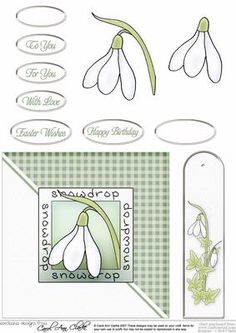 Snowdrops Quick card with Decoupage on Craftsuprint designed by Carol Clarke - Ready to use card front with step by step 3D decoupage, greetings plus a blank text plate. A matching keepsake bookmark is also included on the sheet. If you sell your cards why not include your contact details on the back of the bookmark ... for future orders!This sheet will mix, match and coordinate with all our other snowdrop downloads too. - Now available for download!