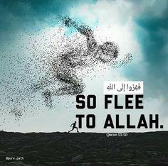 Islamic Quotes Wallpaper, Islamic Love Quotes, Islamic Inspirational Quotes, Religious Quotes, Quran Wallpaper, Allah Quotes, Prayer Quotes, True Quotes, Hadith