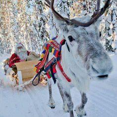 Santa Claus llegando en trineo