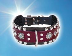 Collar And Leash, Collars, Best Apartment Dogs, Red Dog, Leather Collar, Black Felt, Turquoise, Awesome, Accessories