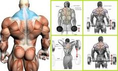 Best Trapezius Exercises to