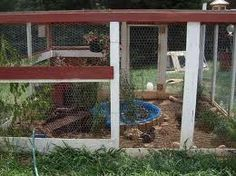 Image result for duck house