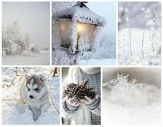 Winter Snow, Colour, Winter, Outdoor, Color, Winter Time, Outdoors, Outdoor Games, The Great Outdoors