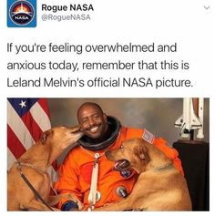 """Feel-Good Memes And Pics To Make You Smile - Funny memes that """"GET IT"""" and want you to too. Get the latest funniest memes and keep up what is going on in the meme-o-sphere. Animal Memes, Funny Animals, Cute Animals, Happy Animals, Nasa Pictures, Funny Pictures, Dog Pictures, Animal Pictures, Dog Memes"""
