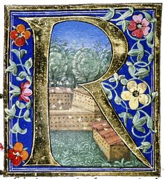 Douce Pliny - Florentine Venice 1476-23.  I'd really like this to be bees and bee boxes, but it is probably doves.  I'll leave it here till I go explore the original ms.