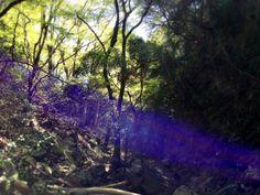 """Kokuryu"" in the Storm / Jp Heart Sutra(般若心経) Jp Heart Sutra《般若心経》Complete Ver1.0      Photo by : Kengo Koyama : 2013/04/13"
