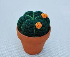 Amigurumi Cactus Tejido A Crochet Regalo Original : Miniature cactus crochet plant in wooden pot collectable