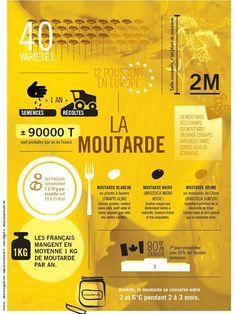 ce qu'il faut savoir sur la moutarde