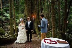 A sweet pic of Elizabeth & Kane's epic elopement at Crystal Creek Rainforest Retreat! Richard Windeyer Photography on hand to capture this intimate experience. Amazing Weddings, Real Weddings, Rainforest Locations, Marriage Celebrant, Sweet Pic, Byron Bay, Wedding Men, Alters, Gold Coast