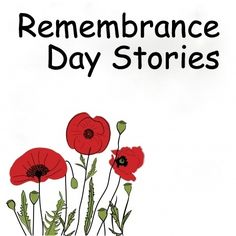 That Fun Reading Teacher's top three story choices for Remembrance Day, and a video link to Linus reciting 'In Flanders Fields'.
