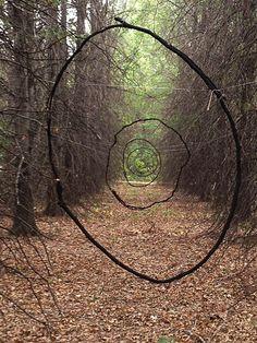 vjeranski:    walk in the woods