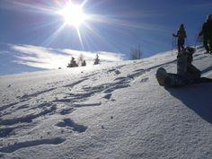 Schneeschuhwandern im Naturpark Dobratsch Winter, Mount Everest, Mountains, Nature, Travel, Outdoor, Summer, Outdoors, Naturaleza