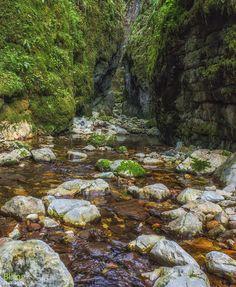 Valea Sighiştelului – un paradis sălbatic al peșterilor Places To Visit, River, Nature, Outdoor, Beautiful, Beauty, Park, Outdoors, Naturaleza