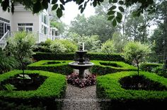 Boxwood Hedges and Fountain