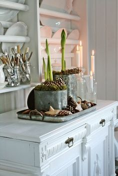 I love this scene. the galvenized buckets topped with pine cones and moss for housing bulb forcing! just great for holidays or continuing into january which totally cheers me up after all the Christmas decor has to come down and leaves us with feelings of the house feeling bare. gives me something to tend to when the garden is resting. :) VIBEKE DESIGN: Velkommen November !