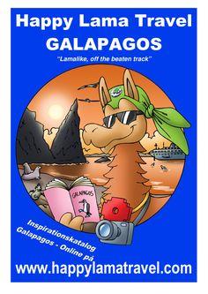 Rejser til Galapagos - Galapagoscruise - Vandring på Galapagos - Galapagos rejser