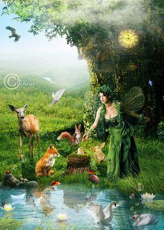 forest magic ~ fairy
