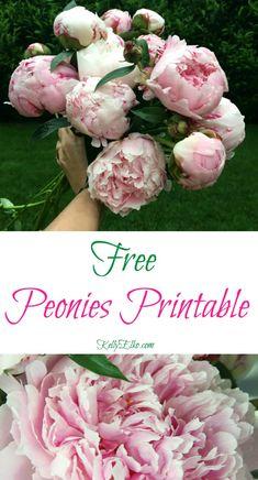 Free Peonies Printable kellyelko.com