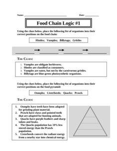 Food Web Logic Puzzles - Patrick Haney - TeachersPayTeachers.com
