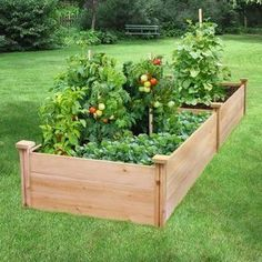 Building raised garden beds has many rewards to it. It's the kind of arrangement in creating gardens that any average gardener can take real.