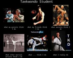 Accurate. TKD is not as dangerous a other martial arts...but it's not really ballet either XD